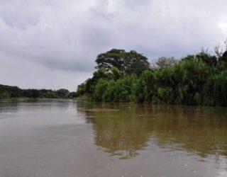 Crean Grupo Élite para combatir delitos ambientales en Valle del Cauca
