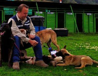 En Cali logran sentencia que permite ingreso de perros de asistencia a sitios públicos