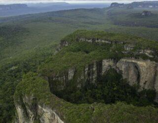 Colombia redujo su deforestación en 2019, según Ideam