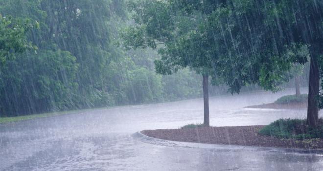 lluvias-y-Google